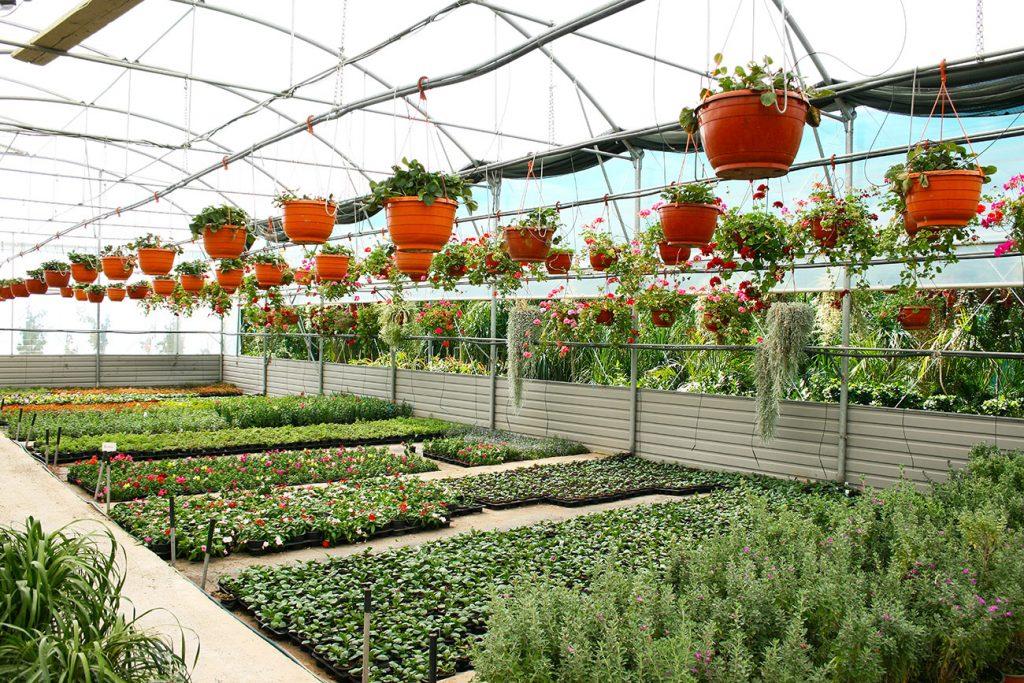 Tende per Giardini 1